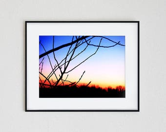 WINTER SKY | instant download, printable wall art, minimalist photography, landscape, nature, silhouette, modern, winter, tree, sunrise