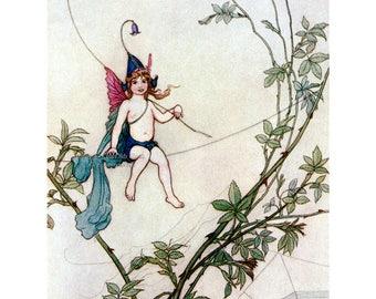Fairy Greeting Card - Puck and the Cobweb - Midsummer Nights Dream - Repro Warwick Goble