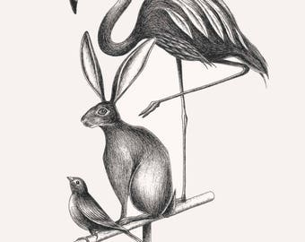 Print Birds and Hare