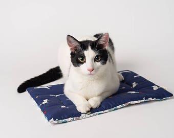 Catnip Yoga Mat Cat Toy (1)
