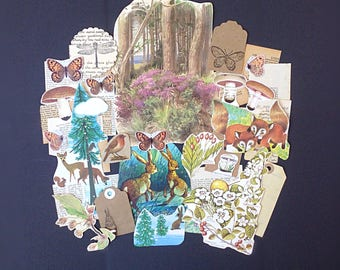 Unique woodland-themed ephemera and neutral collected paper pack