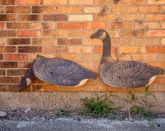 Canada Geese Decoys Vintage Johnson's Folding Goose Decoys
