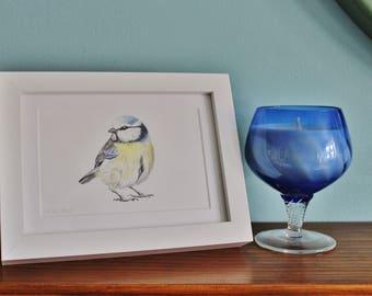 Blue Tit Bird Watercolour Painting - Garden Bird - Framed BlueTit giclee print - Bird Art Poster - Picture and gift for the home