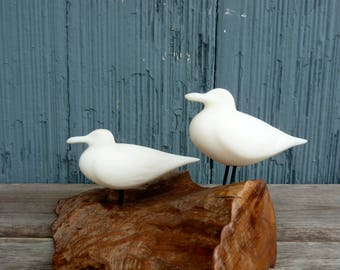 John Perry Seagull art, smaller size, two gulls perched on a piece of wood, 70s original art