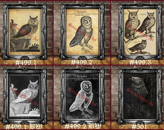 Owl art print, spirit animal walldecor, Owl totem, Occult art for witch, gothic home decor, dark art, witchcraft  pagan poster #499-502