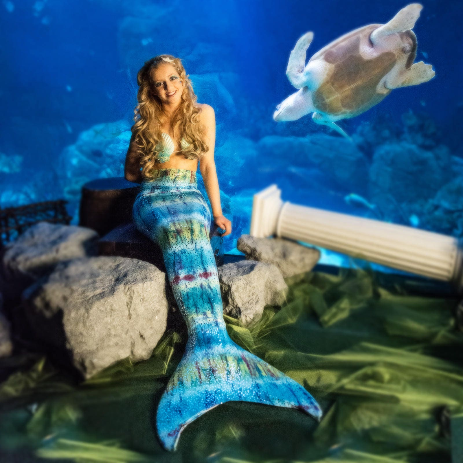 Swimmable Mermaid Tail Includes Olympic Monofin 2 Piece