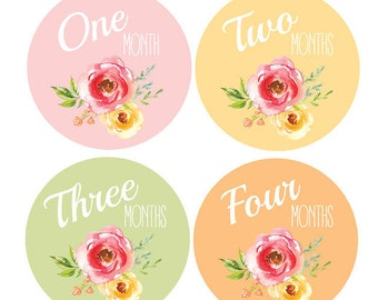 PRINTABLE Baby Girl Month Stickers Monthly Baby Stickers, Baby Month Stickers, Monthly Bodysuit Vintage Floral Shabby DIY