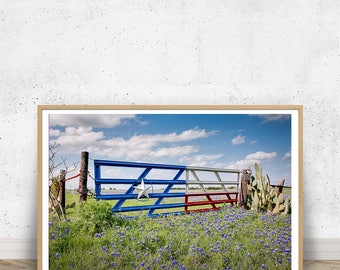 Texas Flag Gate with Bluebonnets, Western Art, Texas Hill Country, Texas Landscape, Wall Art, Texas, Southwest Photos, Western Scenery, Red