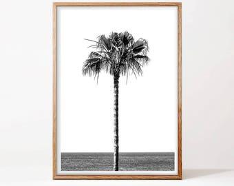 Palm Tree Print, Palm Beach Wall Art, Minimalist Art, Black And White Photo, Holiday Decor, Beach Print, Hawaii Print, Digital Download