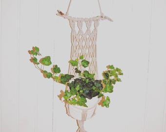 Macrame wall door plant