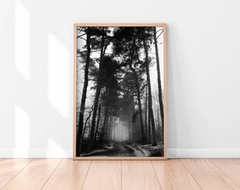 Forest Print, Forest Photography, Woodland Print, Black and White Forest, Forest Art, Nature Photography, Nature Wall Art, Minimalist Art