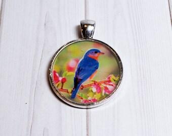 Bluebird necklace - nature jewelry - bluebird jewelry - bird jewelry - gift for her - bird lover gift - bluebird keychain - photo pendant