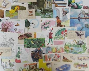 nature & bird themed ephemera for junk journals, smash books, art journals, collage and altered art, bird themed ephemera