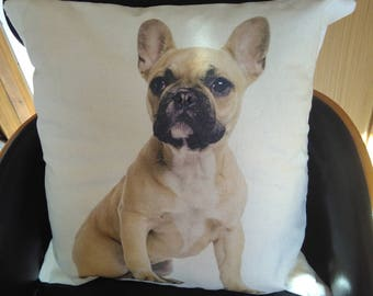 French Bulldog cushion FREE POSTAGE