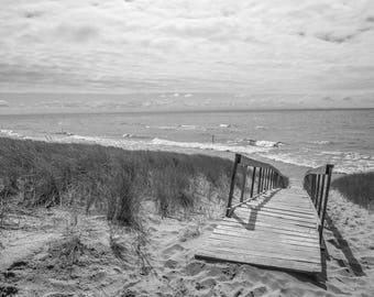 Landscape Pathway to Oval Beach Lake Michigan in Saugatuck Michigan Black and White Photograph Print 12 x 18