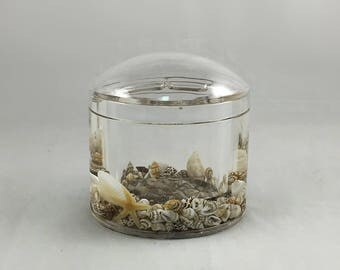Sea Escape Cotton Jar with Premium Quality Acrylic and Mineral Water inside
