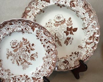 "A great autumnal, English, antique pair, Copeland ""impi"" shallow bowl and bread plate"