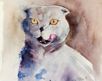Original painting of a scottish fold cat - original watercolor of a scottish fold cat - cat art - pet painting