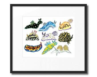 """Orginal Nudibranch Drawing (11""""X14"""")"""