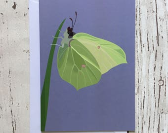 Brimstone butterfly greeting card - blank inside