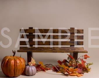 Digital Backdrop/prop newborn - Fall bench with pumpkins newborn - toddler digital backdrop