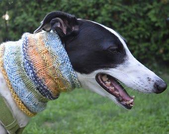Dog snood, sighthound, greyhound, whippet, lurcher, Italian greyhound