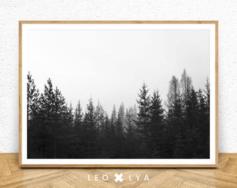 Modern Scandinavian Print, Forest Print, Landscape Prints, Digital Landscape, Nature Decor, Nature Home Decor, Nature Poster, Nature