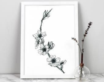 Blossom branch fine art print