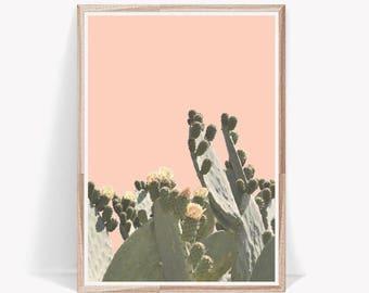 Cactus Print,Art Prints,Cactus Wall Art,Digital Download,Cacti Print,Wall Art,Desert Cactus,Print,Cactus,Wall Decor,Botanical Print,Posters