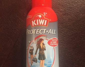 Protective canvas shoe apray