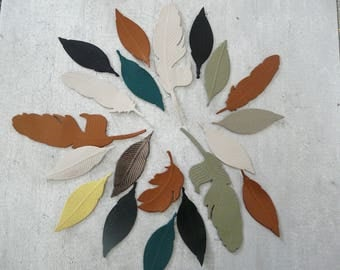 set of 20 feathers in fine leather 4-9 cm