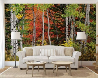 Wall Mural Decal Forest, Forest Wall Decal, Wall Mural Woods, Trees  Wallpaper, Part 87