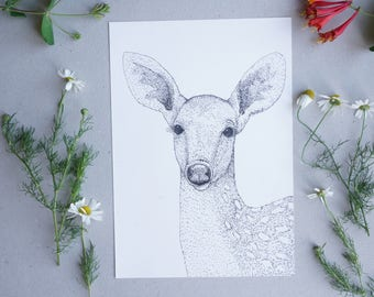 Deer Illustration/Woodland Fallow Deer Available in Various Sizes