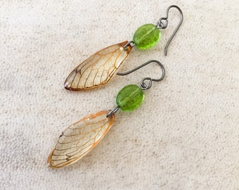 Niobium Earrings Cicada Wing Earrings Shamrock Real Bug Insect Lover Gift Nature Earrings Preserved Specimen Real Cicada  Eco Resin Wing