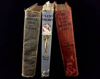 Set of 3 Antique Hardback books - 1944 Cluny Brown - 1900 Barriers Burned Away - 1908 The Trail of the Lonesome Pine