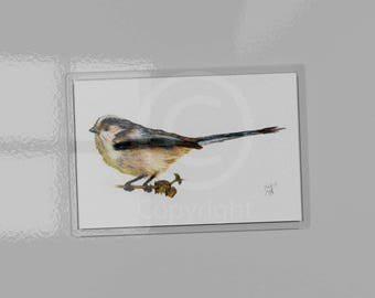 Long-tailed Tit Magnet, Bushtit, British Garden Song Birds, print of watercolour pencil drawing, bird watchers, gardeners, bird lovers