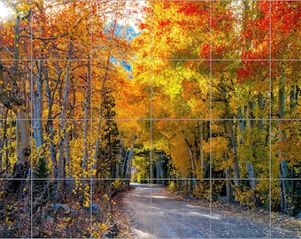 "Autumn Trees Road Ceramic Tile Mural 24"" x 36"" Kitchen Wall Backsplash"