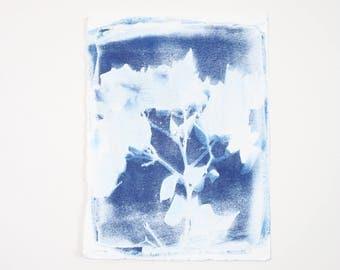 Handmade Art Print / Small Original Bougainvillea Botanical Floral Cyanotype Photogram Art / Blue / Indigo Print