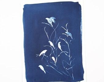 Solar Eclipse / Handmade Art Print / Large Bird Cyanotype Photogram Art / Blue / Indigo Print