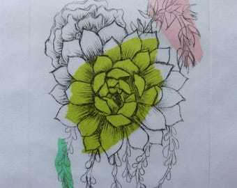 Succulent Assortment - Drypoint Etching with Chine-collé