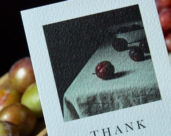 Thank you cards//Pack of 5 fruit still life thank you postcards with envelopes//art cards // still life photography //fruit still life post
