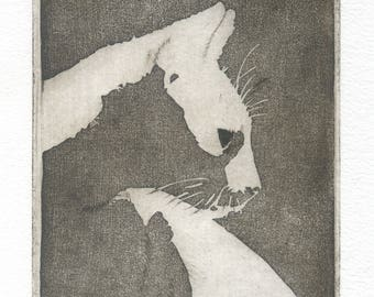 "Original engraving ""white or black? / cat/cats/printmaking/engraving/print art/cat/beautiful/beautiful cat/cat/Black Cat/Gentleman cat/art beautiful"""