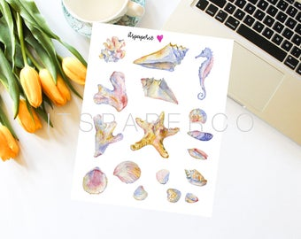 Seashells Stickers - Bullet Journal Stickers - Planner Stickers - Decorative Stickers - Illustrated Stickers