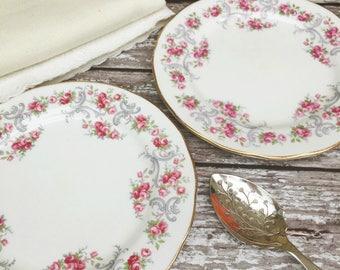 A Pair of Pretty Vintage Bone China Tea Plates - Royal Osborne