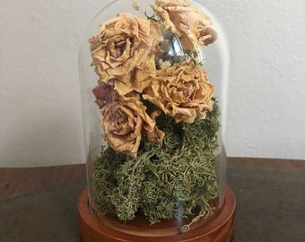 Real hand dried roses and moss glass dome