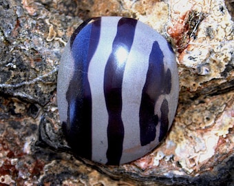 Zebra Stone Cabochon