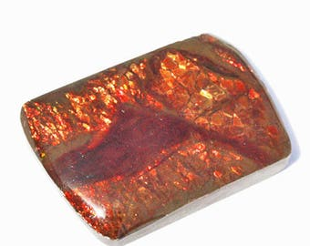 Excellent AAA+ Quality Natural Red Fire Ammolite Cabochon, Size 24X17X4 MM, Pendant Jewellery Gemstone, Suppliers, Ammonite, Calibrated 3872