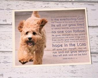 Puppy Dog Scripture Magnet, Bible Verse Isaiah 40:28-31, Faith Quote Magnet, Christian Fridge Clip, Dog Lover Gift, Cavoodle Photo Art Print