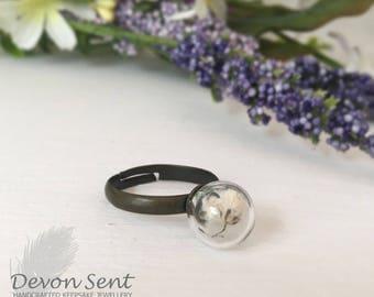 Devon dreams ring, terrarium, dandelion ring, real plant jewelry,anniversary, real flower ring, boho rings, botanical ring, romantic ring