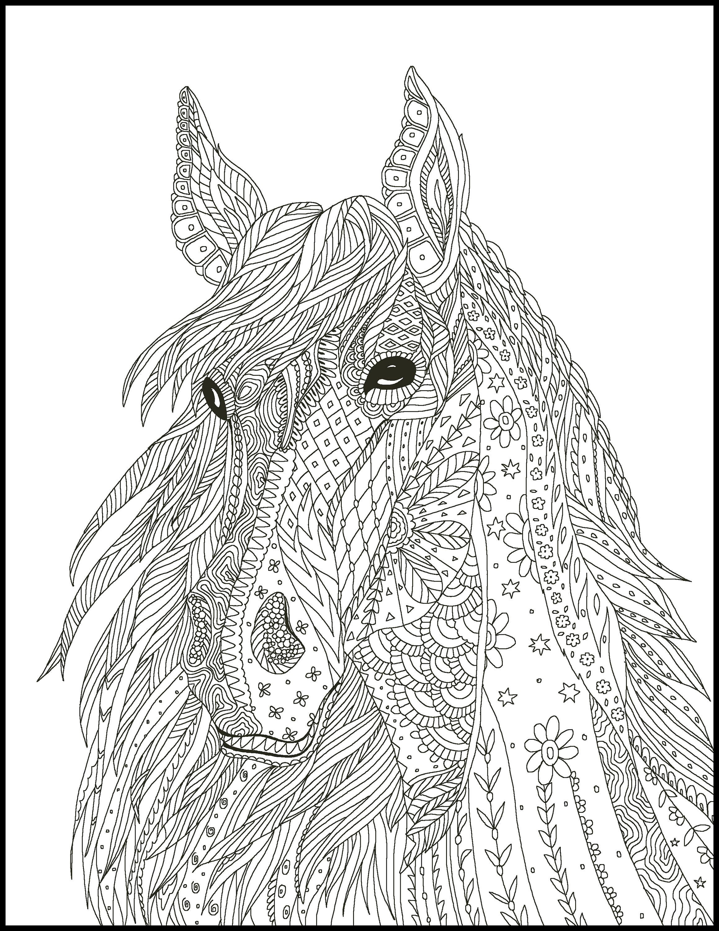 2 Printable Coloring Page for Adults and Kids Fun Coloring